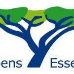 Lebens-Essenz Header mit Logo (Baum mit Schriftzug)