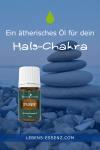Ätherisches Öl für dein Hals-Chakra: Spearmint/Grüne Minze
