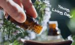 Flasche ätherisches Öl - Herbst Stimmung - Young Living Day